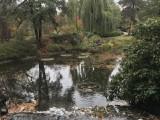 Ogród Botaniczny UWr., foto Natalia Olszewska